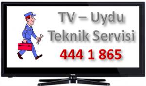 Tv-servis